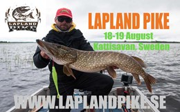Can you catch 5 pikes over 70 cm in Sweden? Lapland Pike Competition.