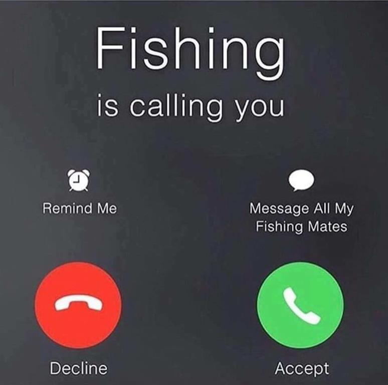 fishing is calling you